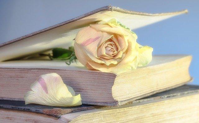 Lưu ý: tặng cuốn sách vừa suất bản và cân nhắc về nội dung cuốn sách nhé
